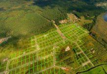 Правовое регулирование льготного предоставления земельных участков